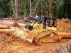 buldozer-forestier