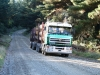 camion-transport-busteni-6