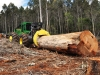 tractor-forestiere-cu-greifer