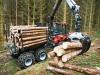 utilaje-forestiere-transport