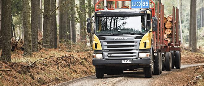 Camioane Forestiere importate de UTILBEN